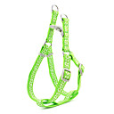Drawable Giraffe Stripe Pattern Harness and Leash for Dogs