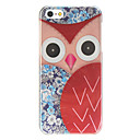 ugle farvet tegning hard Case for iPhone 5/5s