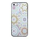 Colorful speciale del modello posteriore Case for iPhone 5/5S