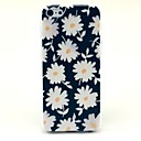 Beautiful Daisies Pattern Hard Case for iPhone 5C