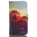 Buy Sony Case Wallet / Card Holder Stand Flip Full Body Dandelion Hard PU Leather Xperia Z3 Compact