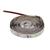 12W 유연한 LED 조명 스트립 300 lm DC12 V 3 m 120 LED가 웜 화이트 화이트 레드 블루 그린
