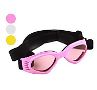 Cat / Dog Sunglasses White / Pink / Yellow Spring/Fall Holiday