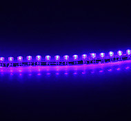 0,24 m 1.5W 24 LED 105lm luce blu LED Light Strip (DC 12V)