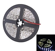 300x5050 SMD 72W 2000LM White Light LED Light Strip (5-Meter/DC 12V)