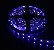 300x3528 SMD 36W 900LM luce bianca LED Light Strip (5-Meter/DC 12V)