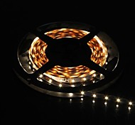 300x3528 SMD 36W 900LM Warm Luce LED Light Strip (5-Meter/DC 12V)