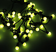 Waterproof 5M 3W 50-LED Yellow Light Ball Shaped LED Strip Light (110V)