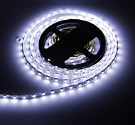 5M 72W 300x5050SMD Cool White Light LED-Streifen-Lampe (DC 12V)