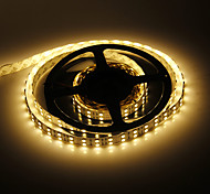 5 M 144W 600x5050SMD luz blanca cálida Lámpara LED Strip (12V DC)