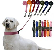 Adjustable Nylon Pet Collar And Leash for Pets Dogs