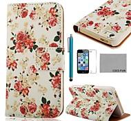 COCO FUN ® Rose White Pattern PU Leather Case Full Body com Filme, Stand e Stylus para iPhone 5/5S