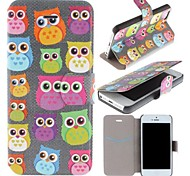 Cute Owl Pattern Clamshell PU Leather Full Body Case with Card Slot for iPhone 5/5S