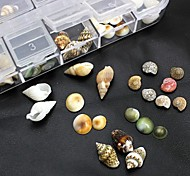 100PCS Mix Shapes Natural Shell Accessories Not Include Box 3D Nail Art Decoration