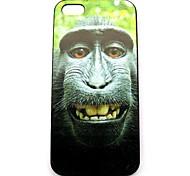 Schimpansen-Muster Hülle für das iPhone 4 / 4s