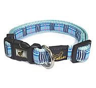 Dog Leash Adjustable/Retractable Blue Plastic / Textile