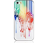 Dripping Paint zebra Pattern Black Frame Back Case for iPhone 5/5S