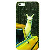 alpaca nel caso del modello auto per iPhone 4/4S