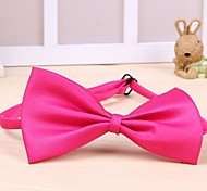 Cat / Dog Tie Red / Black / White / Green / Pink / Purple / Orange / Light Blue / Dark Blue Spring/Fall Bowknot Cosplay / Christmas