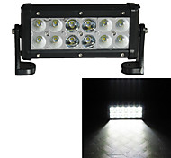 LED Long 36W 6000K Driving  Assistance Car Lights