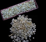 1000PCS White Resin Mix Nail Art Decoration
