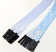 10P Double Dupont line Cord Length 60CM