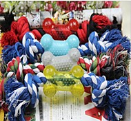 1PCS Pet Supplies Cotton Rope with Bone Dog Toy Chew Toys Random Color