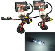 Kit Carking ™ 12V 35W H1 6000K White Light Xenon