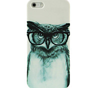 The Owl with Glasses Pattern Hard Case for iPhone4/4S