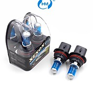 HM® Xenon Plasma 9007 12V 100/80W Halogen Lamp Headlight White Light Bulbs (a Pair)