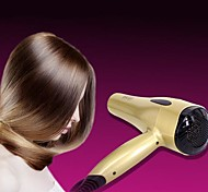 Hair Dryer Wet & Dry Hot and cool wind Normal