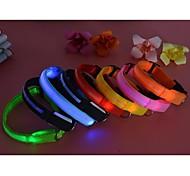 Cat / Dog Collar Waterproof / LED Lights / Adjustable/Retractable Red / White / Green / Blue / Pink / Yellow / Orange Nylon