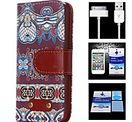 Blue Curtains Pattern Full Body Case+1 HD Screen Protector+1 USB Data Transmit and Charging Cable for iPhone 4/4S