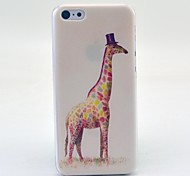 Graffiti Animal Pattern Hard Cover Case for iPhone 5C