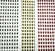 Señuelos blandos / Vinilos / Cebos Señuelos blandos / Vinilos 500 pcs , 0.03 g / <1/18 Onza mm pulgadaPlata / Rojo / Lomo cromado en