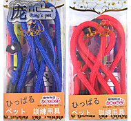 P Chain 0.8 Blister Pack For Dogs