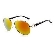 100% UV Alloy Aviator Retro Sunglasses