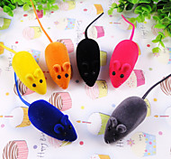 The Little Mouse For Pets Dogs