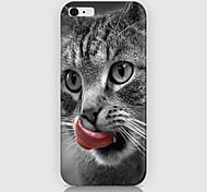 la lingua leccare il caso del modello del gatto la copertura posteriore per phone6 più caso