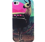 Alpaca Pattern TPU Material Soft Phone Case for iPhone 4/4S