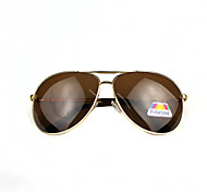 Sunglasses Men / Women / Unisex's Elegant / Modern / Fashion Flyer Gold Sunglasses Full-Rim