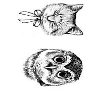 OEM - Tatuajes Adhesivos - Non Toxic/Parte Lumbar/Waterproof - Series de Animal - Mujer/Hombre/Adulto/Juventud - Negro - PVC - 10 -
