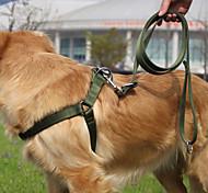 Nylon Harness Large Dog Leashes Suits