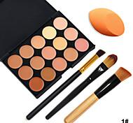 15 Concealer Make-up Pinsel Gesicht