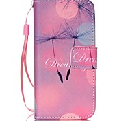 Dandelion Pattern PU Leather Material Flip Card Phone Case for iPhone 5C