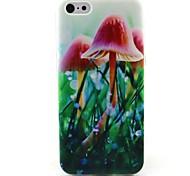 Mushroom Pattern TPU Soft Phone Case for iPhone 5C