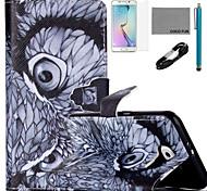 padrão da coruja de noite estojo de couro de coco fun® pu com cabo usb v8, flim, caneta e stand para Samsung Galaxy S6 borda