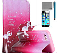 LEXY® Dancing Dandelion Pattern PU Full Body Leather Case with Screen Protector and Stylus for iPhone 5C