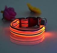 Dog Collar LED Lights Red / White / Green / Blue / Pink / Yellow / Orange Nylon