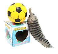 elettrico palla castori calcio